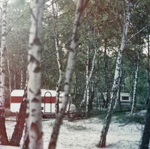 Camping-01