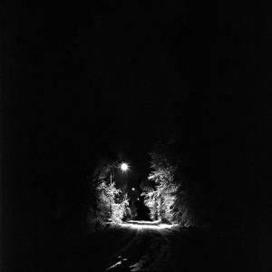 White-road-02